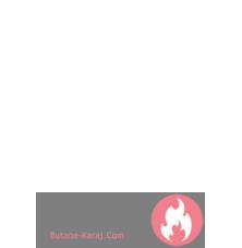 آریستون -
